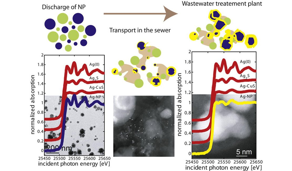 silver nanoparticles in urban wastewater systems